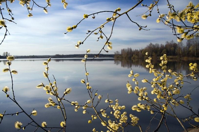 Oczekiwanie na wiosnę /123RF/PICSEL
