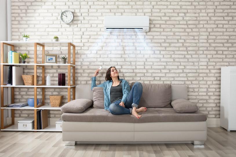 Oczyszczacz pomoże nad zadbać o jakość powietrza w naszym domu /materiały promocyjne