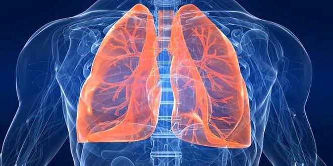 Oczyszczanie płuc domowe sposoby /© Photogenica
