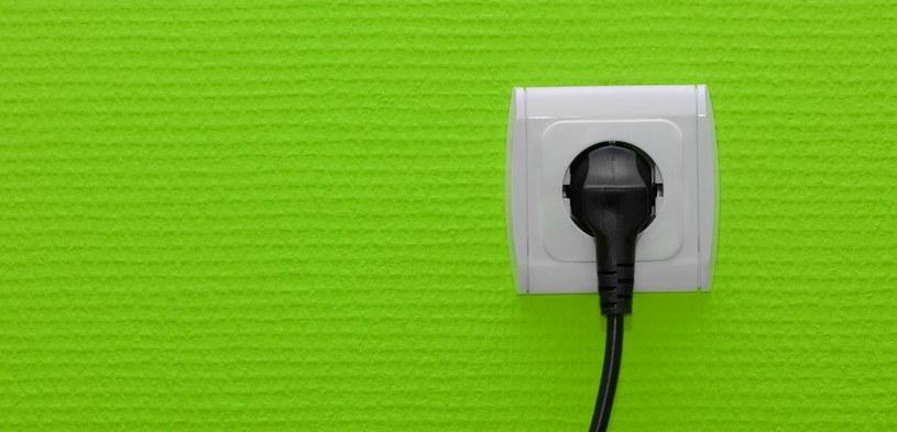 Oczywiście samo gniazdko i kabel nie wystarczą, aby cieszyć się internetem z sieci elektrycznej /123RF/PICSEL