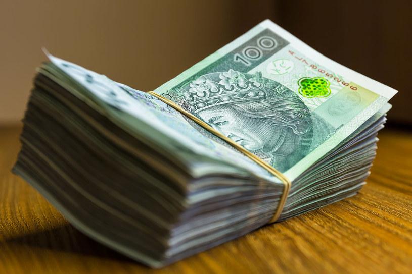Od 1 stycznia pierwszy rok pracy na warunkach 100 proc. płacy minimalnej /123RF/PICSEL