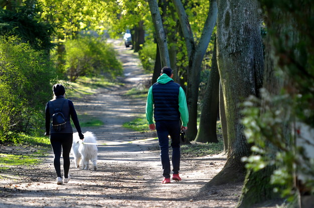 Od 20 kwietnia rząd złagodził przepisy podczas pandemii koronawirusa. Od dziś można przebywać w parkach , lasach i terenach zielonych w celu rekreacyjnym / Marcin Bielecki    /PAP