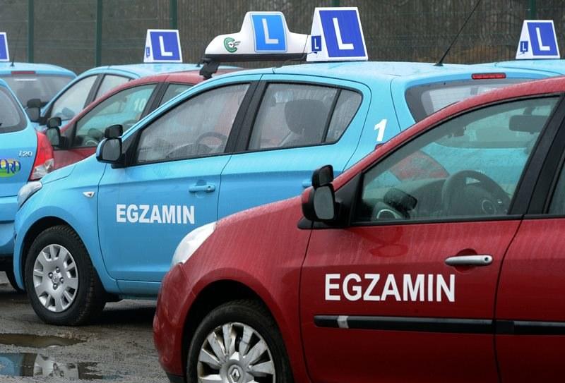 Od dziś obowiazuje jedna baza pytań egzaminacyjnych /Marcin Bielecki /PAP