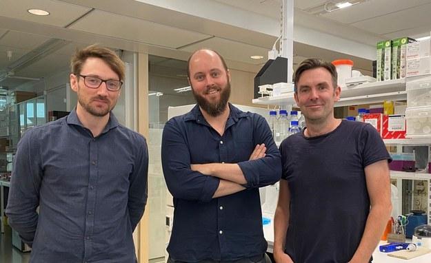 Od lewej: Leo Hanke, Ben Murrell i Gerald McInerney, badacze z Department of Microbiology, Tumor and Cell Biology Instytutu Karolińskiego. t. /Siwen Long /Materiały prasowe