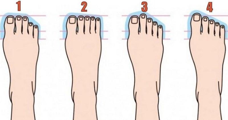 Od lewej: stopa rzymska, stopa kwadratowa, stopa grecka i stopa spiczasta /Laugh Daily /Twitter