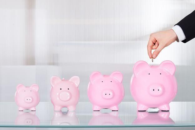 Od nowego roku zaczynasz oszczędzać? /©123RF/PICSEL