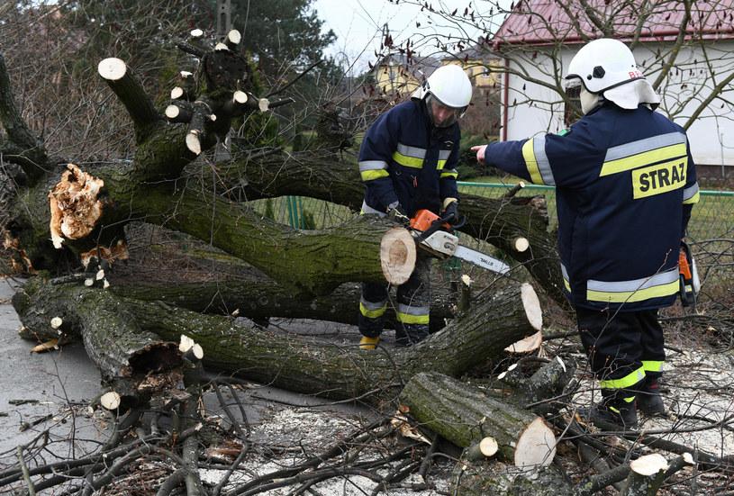Od soboty strażacy interweniowali w kraju ponad 300 razy, usuwając szkody spowodowane przez silny wiatr /Łukasz Solski /East News