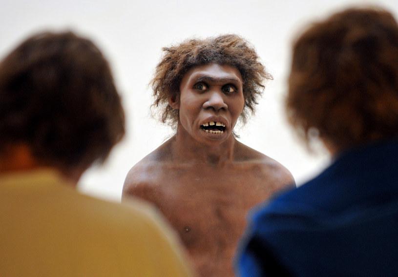 """""""Od XIX wieku neandertalczycy byli postrzegani jako gatunek niezdolny do tworzenia sztuki"""" /PIERRE ANDRIEU /AFP"""
