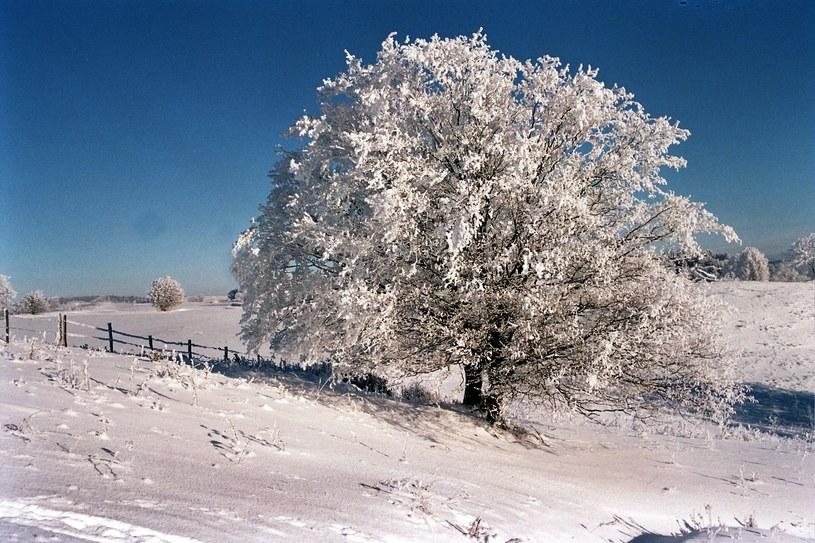 Od zimowych krajobrazów trudno oderwać wzrok /Piotr Mecik /Agencja FORUM