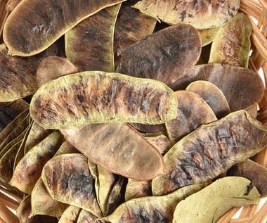 Odchudzające preparaty z senesem: Czy warto je stosować?