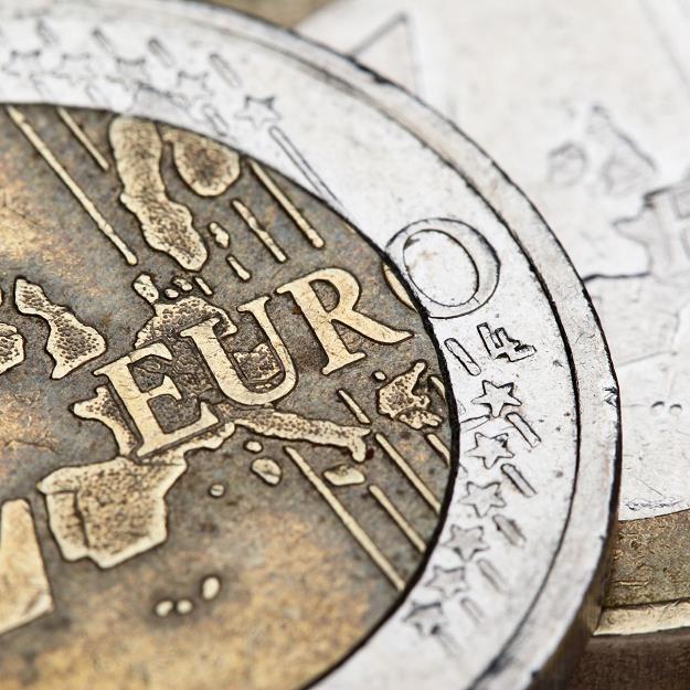 Oddala się perspektywa przyjęcia przez Polskę wspólnej waluty /©123RF/PICSEL