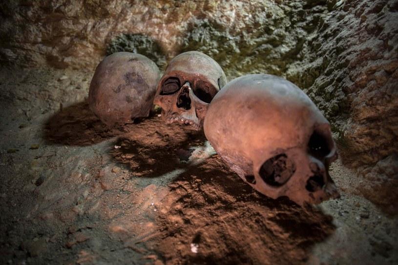 Odkrycie egipskich archeologów /IBRAHIM YOUSSEF /PAP/EPA
