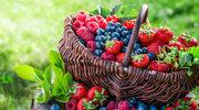 Odkryj siłę owoców jagodowych