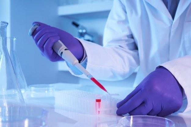Odkryte przez Polaków komórki VSEL jednak nie istnieją? /123RF/PICSEL