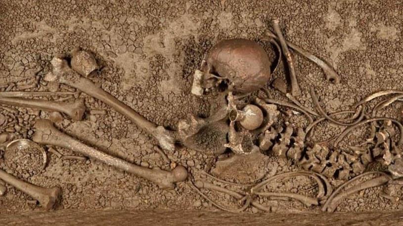 Odkryte szczątki kobiety /Fot. Jürgen Vogel/LVR-LandesMuseum Bonn /materiały prasowe
