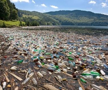 Odkryto bakterie żywiące się plastikiem