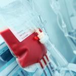 Odkryto enzymy, które zmienią grupę krwi A w 0