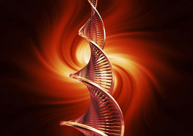 Odkryto genetyczne podstawy nadciśnienia płucnego? /© Glowimages