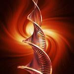 Odkryto geny odpowiedzialne za nadciśnienie płucne