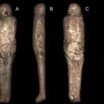 """Odkryto """"mumię błotną"""" - nigdy nie widziano czegoś takiego"""