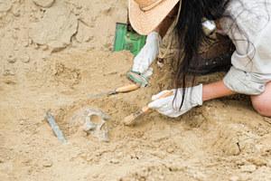 Odkryto najstarszy przypadek dżumy. Ma pięć tysięcy lat