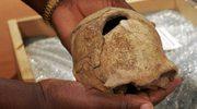 Odkryto nieznany wcześniej gatunek praczłowieka