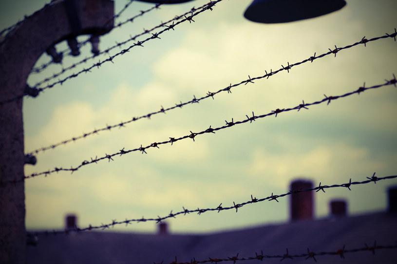 Odkryto, że temat obozów koncentracyjnych pojawił się... w grach społecznościowych /123RF/PICSEL