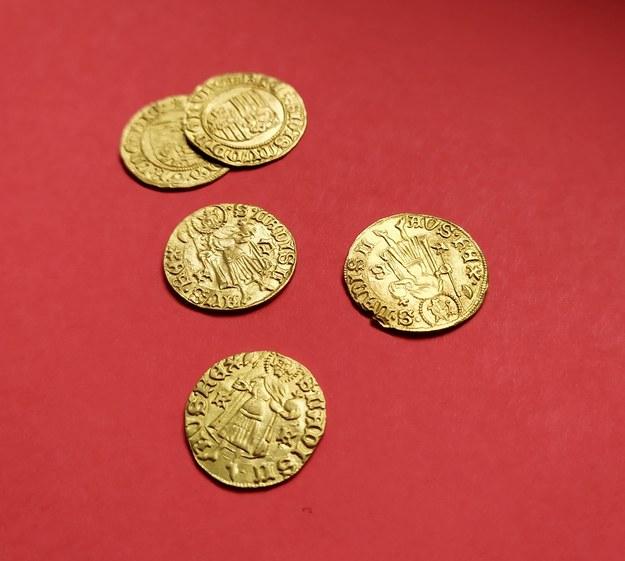 Odnalezione monety /Muzeum Regionalne w Lubaniu /