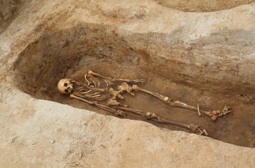 Odnaleziony szkielet pochodzi z 1354 roku /Piotr Bułakowski /RMF