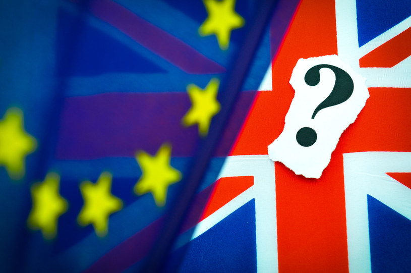 Odsetek zwolenników pozostania w UE wzrósł o 3 proc. w porównaniu do marca / Lucian Milasan  /123RF/PICSEL