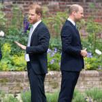 Odsłonięcie pomnika księżnej Diany. Eksperci analizują mowę ciała Harry'ego i Williama