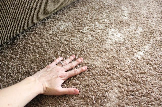 odświeżania dywanu /© Photogenica