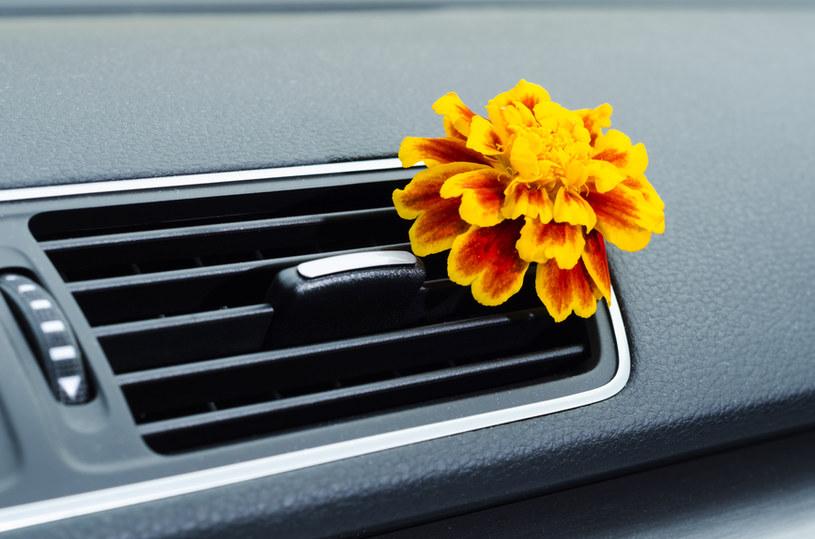 odświeżanie samochodu /© Photogenica