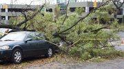 Odszkodowania po huraganach i burzach