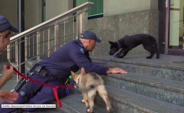 Odwaga nie jest jego najmocniejszą stroną. Przyszły policjant boi się…. schodów