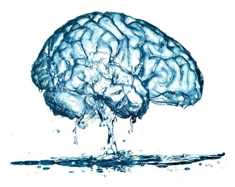 odwodniony mózg /© Photogenica