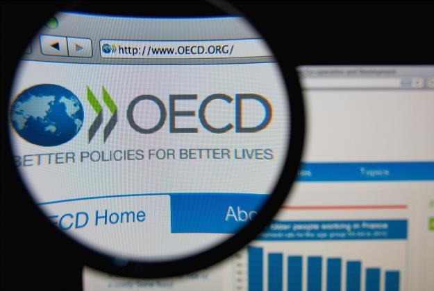 OECD opublikowało raport o Polsce /©123RF/PICSEL