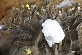 Ofiary zbrodni UB pod posadzką chlewni