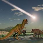 Oficjalnie: To asteroida spowodowała wymarcie dinozaurów