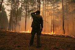 Ogień szaleje we wsi Golovanovo w Rosji