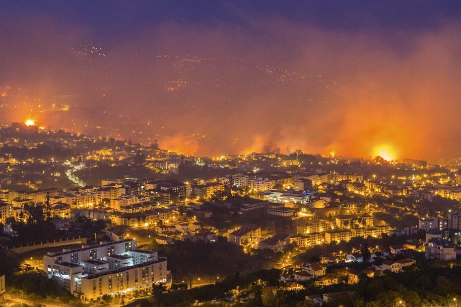 Ogień w Funchal widziany nocą z pobliskiego wzgórza /GREGÓRIO CUNHA  /PAP/EPA