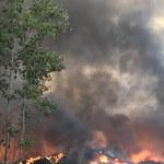 Ogień w składowisku odpadów w Trzebini. Jest wstępna opinia śledczych ws. pożaru