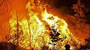 Ogień zabił trzy osoby. Większość pożarów wynikiem podpalenia