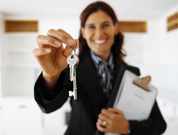 Ogłoszenia o licytacjach nieruchomości będą obowiązkowo zamieszczane w internecie /© Bauer