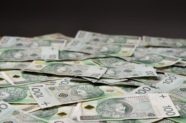 Ogłoszenie programu skupu aktywów przez EBC wzmocniło złotego i dług /©123RF/PICSEL
