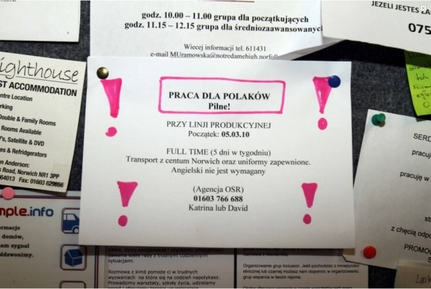 Ogłoszenie z polskiego sklepu/fot. http://www.dailymail.co.uk/ /