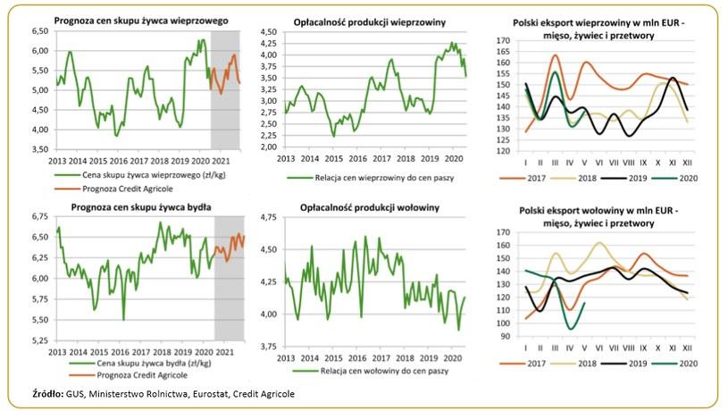 Ogniska wirusa ASF w niemieckim sektorze wieprzowiny pogłębiły spadek cen