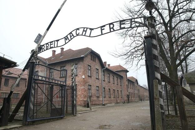 Ogółem do Auschwitz Niemcy przywieźli ok. 150 tys. Polaków. Blisko połowa nie przeżyła /Damian Klamka /East News