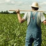 Ograniczenia w handlu ziemią zamroziły ceny. Rolnicy czekają na spadki