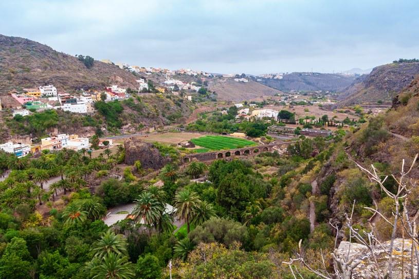 Ogród botaniczny to jedna z najchętniej odwiedzanych atrakcji na wyspie /123RF/PICSEL